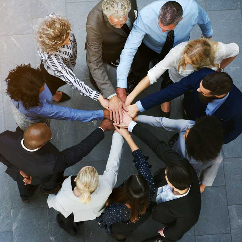 Attività MLA per organizzazioni